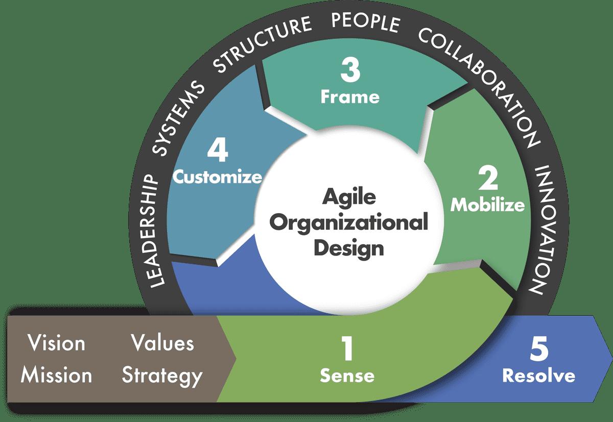 Organizational design là gì?